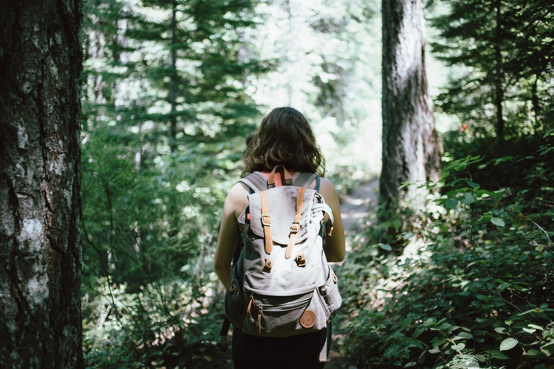 woman hiking woods