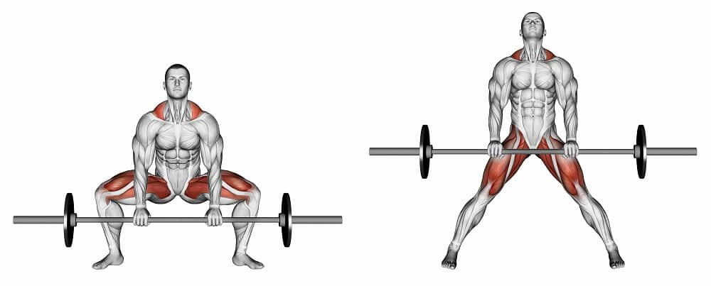 sumo deadlift muscles used