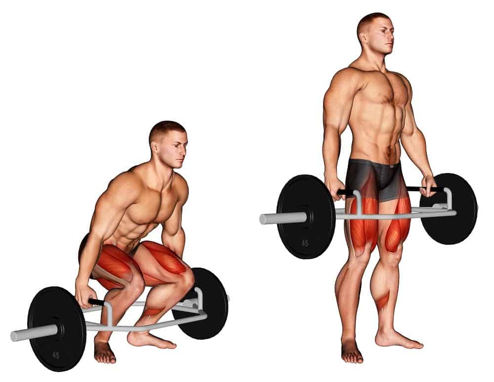 trap bar deadlift muscles
